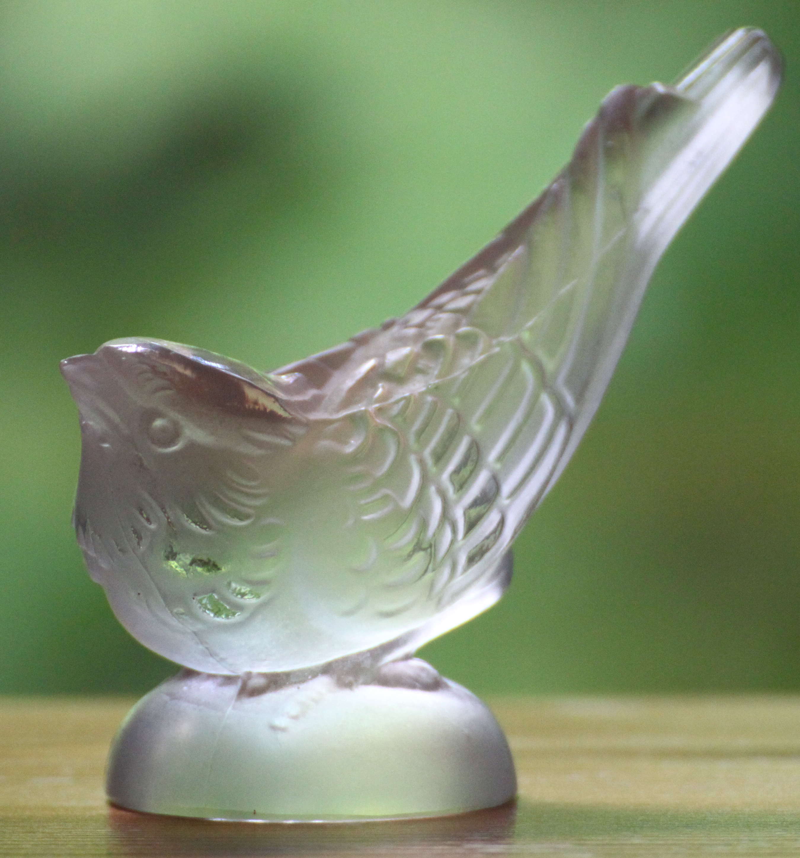 bird glass 3