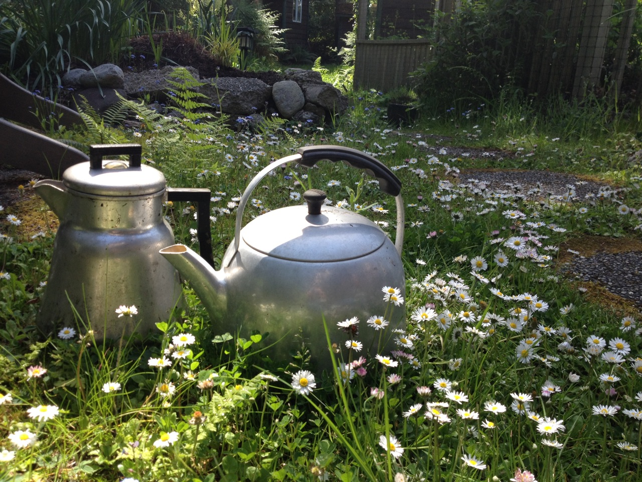 garden coffee pot_tea kettle