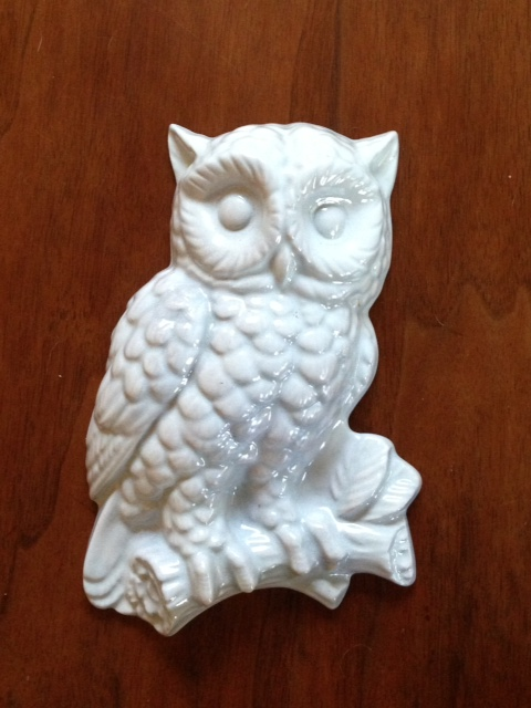 Leslie GS owl after