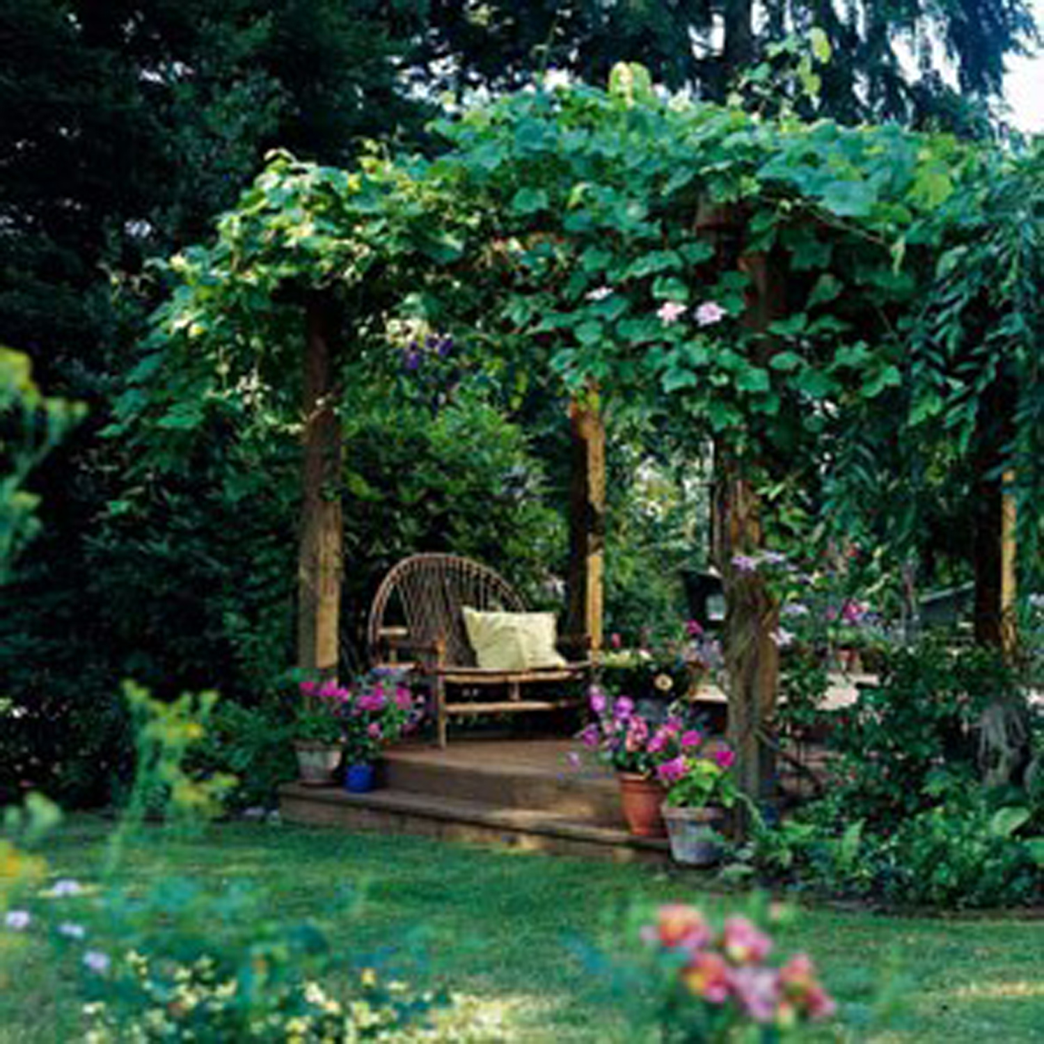 Ideas For Garden Design Relax: Katie's House: A Walk In The Garden And Pergola Plans