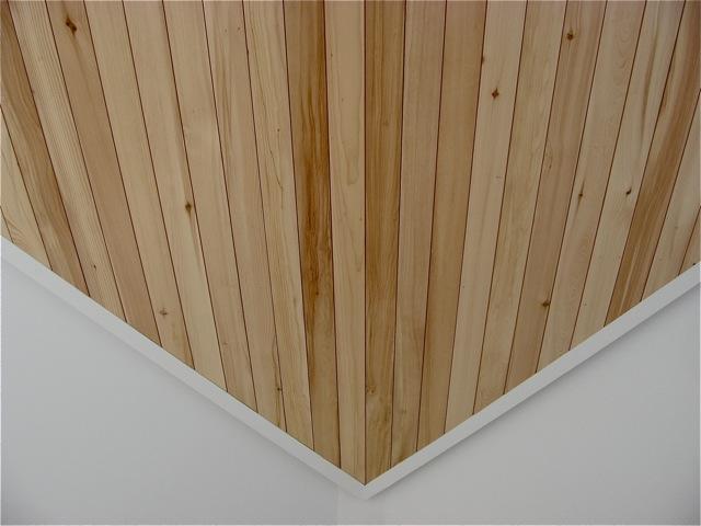 Ceiling detail.  Photo courtesy of Steve Chopp.