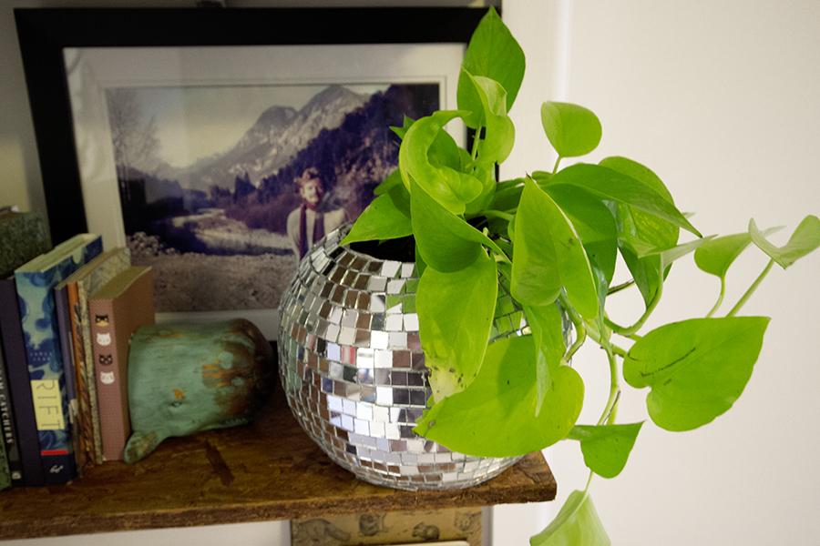discoball planter